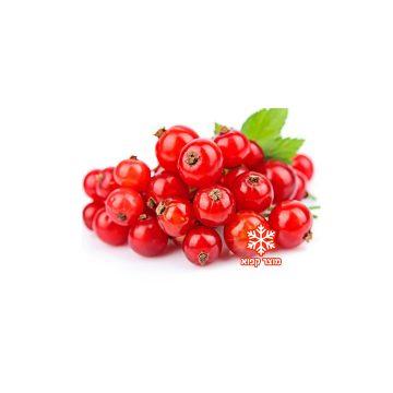דומדמניות אדומות קפואות