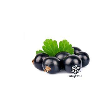 דומדמניות שחורות קפואות